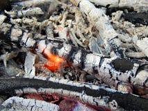 Carvões de uma fogueira ardente fotografia de stock royalty free
