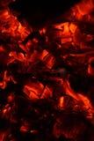 Carvões encarnados Imagem de Stock