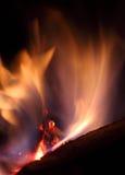 Carvões no incêndio Fotografia de Stock Royalty Free