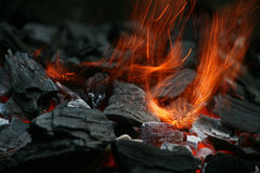 Carvões no incêndio Foto de Stock Royalty Free
