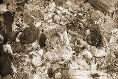 Carvões queimados com a cinza cinzenta após o fogo extinto para o ue do  do barbeÑ foto de stock royalty free