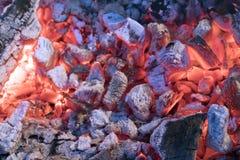 Carvões quentes brilhantemente de incandescência com a cinza cinzenta para o ue do  do barbeÑ fotografia de stock royalty free