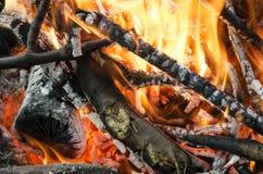 Carvões quentes da madeira queimada Fotografia de Stock