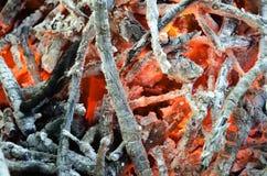 Carvões quentes da madeira queimada Imagens de Stock Royalty Free