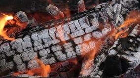 Carvões quentes de log e de lenha de madeira ardentes em uma fogueira com fumo e chama filme