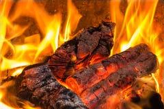 Carvões quentes no fogo, línguas da elevação da chama sobre a lenha fotos de stock royalty free