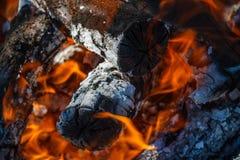 Carvões vermelhos e cinza cinzenta Flamas do incêndio imagens de stock