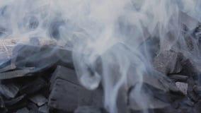 Carv?o vegetal de fumo filme