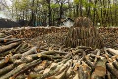 Carv?o vegetal que faz nas florestas de Istambul fotos de stock royalty free