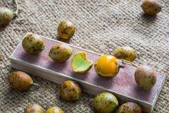 Carvalho de Ceilão (oleosa de Schleichera (Lour ) Merr ) Laxante do fruto pro imagens de stock