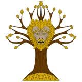 Carvalho Greenman na árvore Fotos de Stock