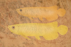 Carved arowana fish on the cow leather Stock Photos