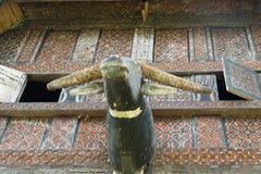 Carved buffalo head decoration on Tongkonan traditional house Royalty Free Stock Photos