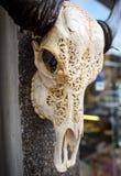 A carved buffalo head Royalty Free Stock Photography