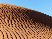 Carved on the desert sand. Sunlight highlighting the dunes in the Sahara royalty free stock images
