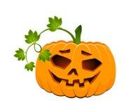 Carved face of pumpkin Stock Photos