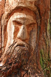 Carved face on tree trunk Royalty Free Stock Photos