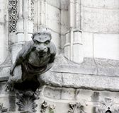Carved Gargoyle Stock Images