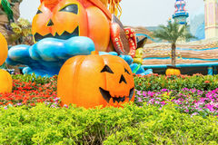 Carved golden pumpkins and flowers. A lot of carved golden pumpkins and faces with background of boats in the park to cerebrate the Halloween in the park in Royalty Free Stock Photo