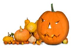 Carved halloween pumpkin Stock Image