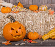 Carved Halloween Pumpkin Royalty Free Stock Photos
