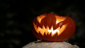 Carved Halloween pumpkin lights inside with flame on a black background close up. Carved Halloween pumpkin lights inside with flame on a black background. Looped stock video footage
