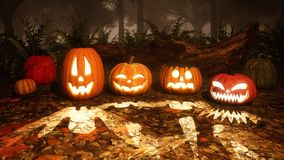 Carved halloween pumpkins in misty autumn forest stock images