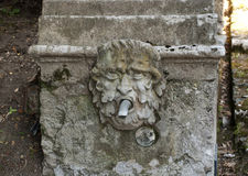 Carved head water feature Stock Images