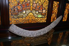 Ivory tusk. A carved ivory fang inside the sultan palace of solo in indonesia stock image
