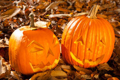 Carved Jack O Lanterns Stock Photography