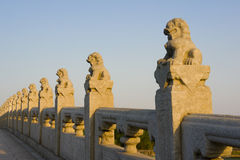 The carved lions and balusters. The carved lions in different poses on the balusters of The Seventeen-arch bridge(The 17-Arch Bridge) in Summer palace, Beijing Royalty Free Stock Image