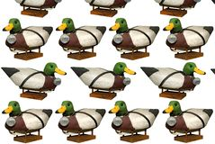 Carved Mallard Drake Decoy Ducks. Hand carved Mallard Drake Decoy Ducks isloated over white royalty free stock photos