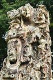 Carved Mayan stella, Copan ruins, Honduras Royalty Free Stock Photo