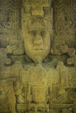 Carved Mayan stones, Quirigua ruins, Guatemala Stock Photography