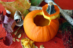 Carved Open Halloween Pumpkin Royalty Free Stock Photo