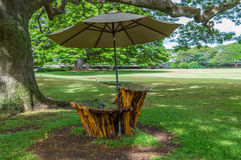 Carved Picnic Table. Wooden picnic table carved out of a Monkey Pod tree stock photography