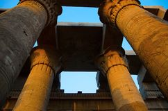 Carved pillars of the Temple of Kom Ombo, Is an unusual double temple, It was constructed during the Ptolemaic dynasty, 180-47 BC. Carved pillars of the Temple Stock Photo