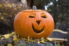 A carved pumpkin Royalty Free Stock Image