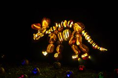 Pumpkin art: triceratops skeleton. Pumpkins carved and backlit to create art, here, a Triceratops dinosaur skeleton, surrounded by glowing  jack o` lanterns, at Stock Images