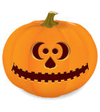 Carved pumpkin. Background with orange pumpkins and stems Royalty Free Stock Photos