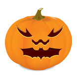 Carved pumpkin. Background with orange pumpkins and stems Stock Images
