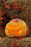 Carved pumpkin display for Halloween Royalty Free Stock Images