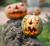 Carved pumpkin faces in park Royalty Free Stock Images