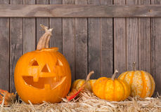 Carved Pumpkin and Squash Royalty Free Stock Photos