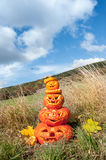 Carved pumpkins by the field Stock Image