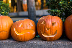 Carved pumpkins on a street curb. Stock Photos