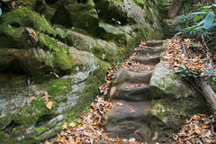 Carved stone steps Stock Photography