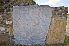 Carved stones of the ruins of Monte Alban, Mexico Stock Photography