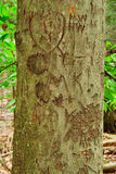 Carved Tree Trunk with Heart Stock Photo