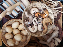 Carved Wood Items. A range of small wooden carved items, including eggs, handles for traditional Greek walking sticks, honey dippers and pastry rollers. For sale stock images